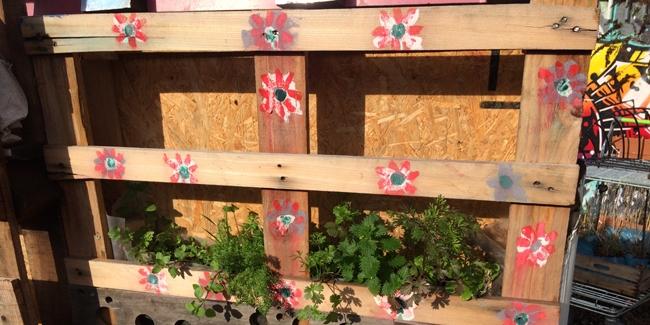 Comment fabriquer un jardin ou mur v g tal avec une palette for Fabriquer un mur vegetal avec palette