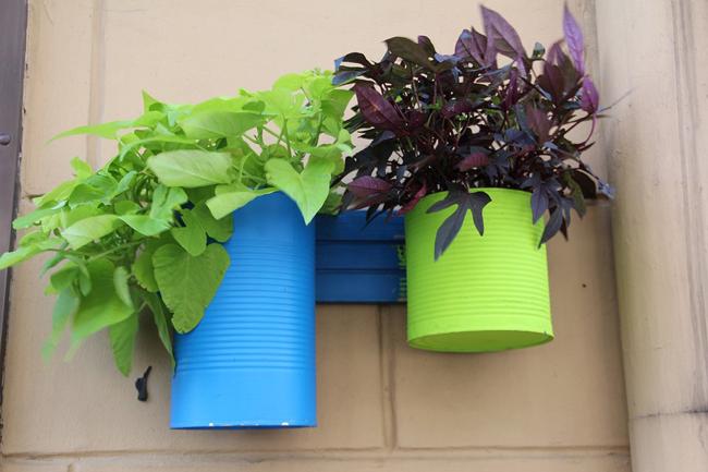 comment fabriquer des pots de fleurs avec des bo tes de conserve. Black Bedroom Furniture Sets. Home Design Ideas
